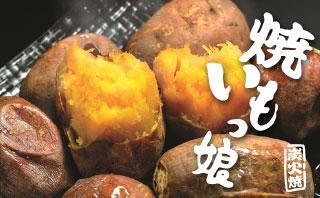 安納芋「焼き芋っ娘」